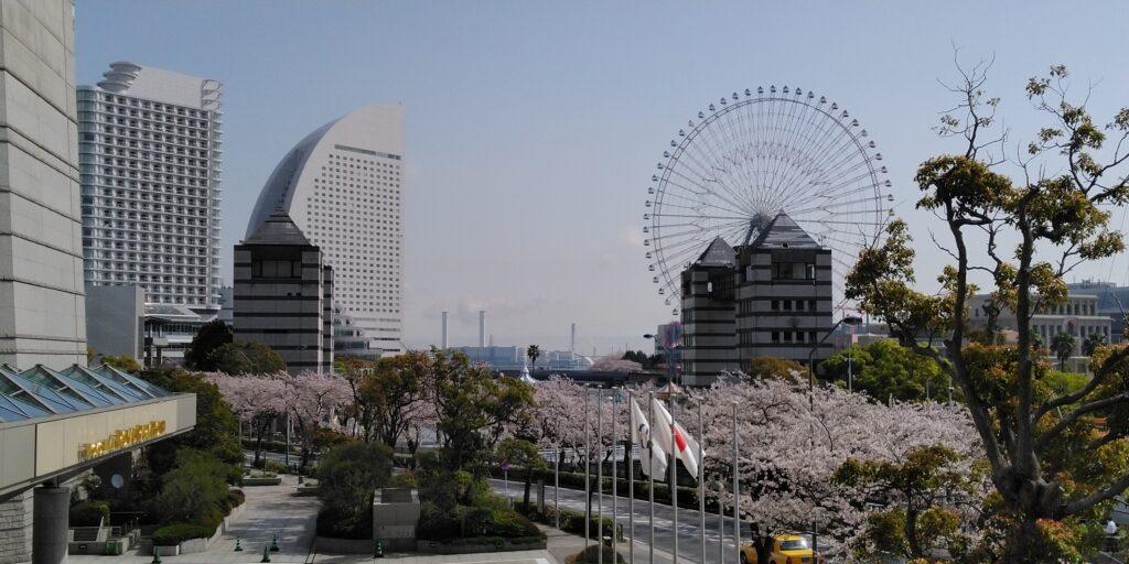 横浜ランドマークタワー「さくら通り」